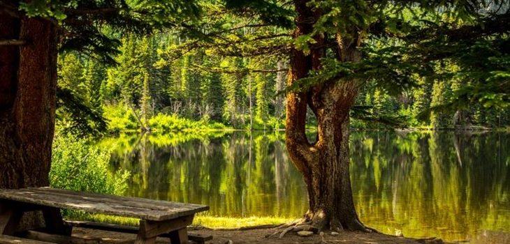 Best Parks in Gainesville