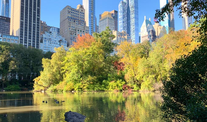 things to do in new york city - riverside park