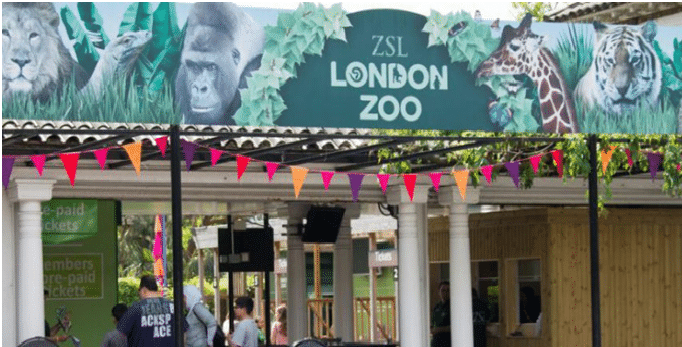 ZSL London Zoo london